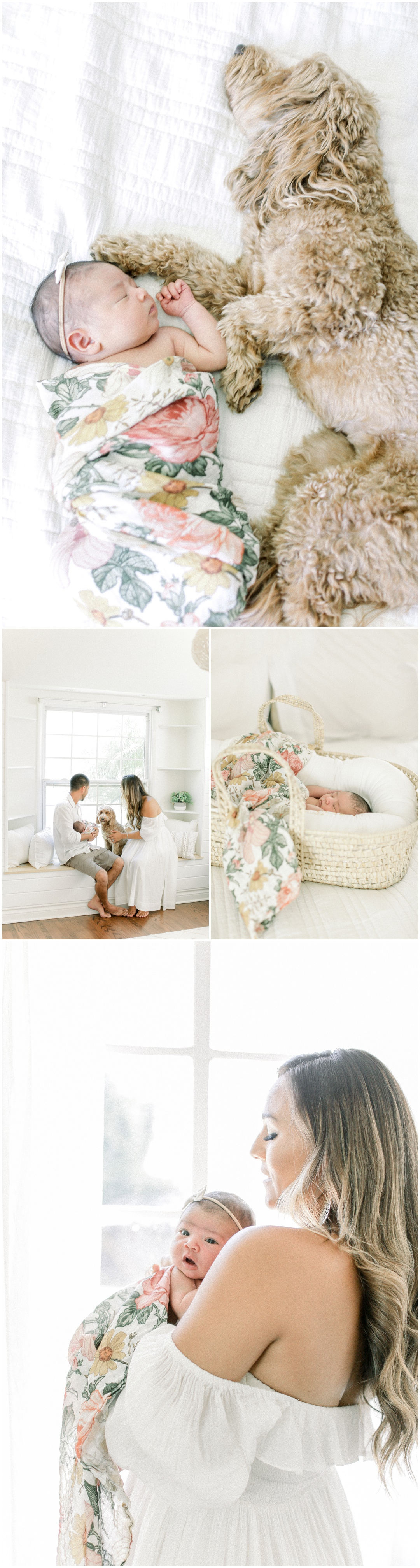 Newport_Beach_Newborn_Light_Airy_Natural_Photographer_Newport_Beach_Photographer_Orange_County_Family_Photographer_Cori_Kleckner_Photography_Newport_Beach_Newborn_Photographer_Taylor_Colacion_Family__4246.jpg