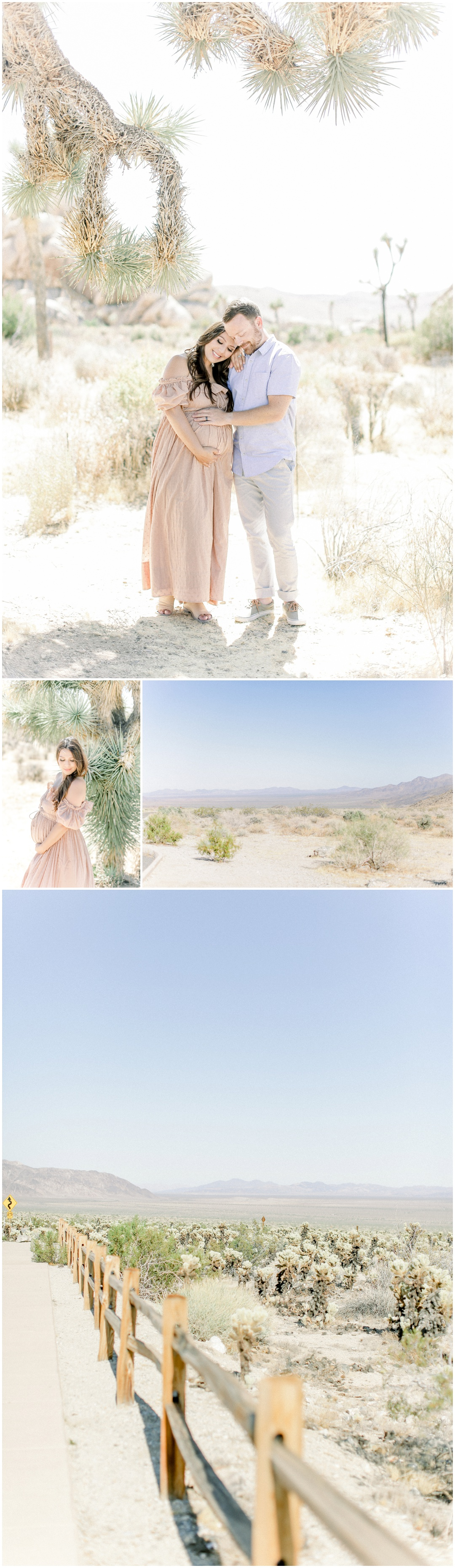 Newport_Beach_Joshua_Tree_Maternity_Photos_Session_Leliani_Hailey_Shane_Hailey_Maternity_Session__4280.jpg