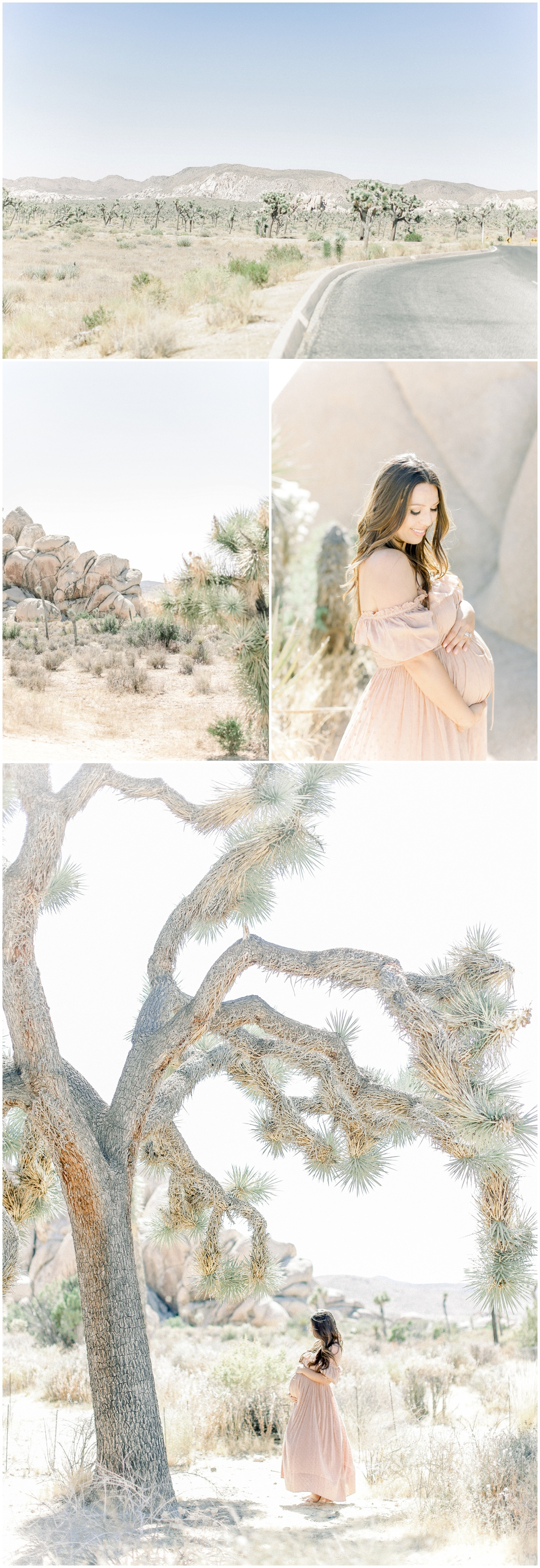 Newport_Beach_Joshua_Tree_Maternity_Photos_Session_Leliani_Hailey_Shane_Hailey_Maternity_Session__4273.jpg