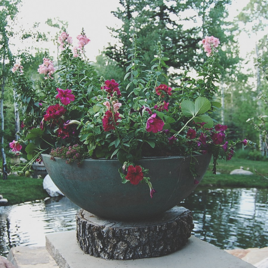 The Hot Pink Planter