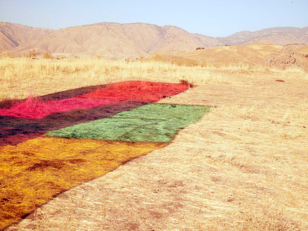 Autumn-de-Wilde-Coloured-Boxes-Yellowtrace-13.jpg