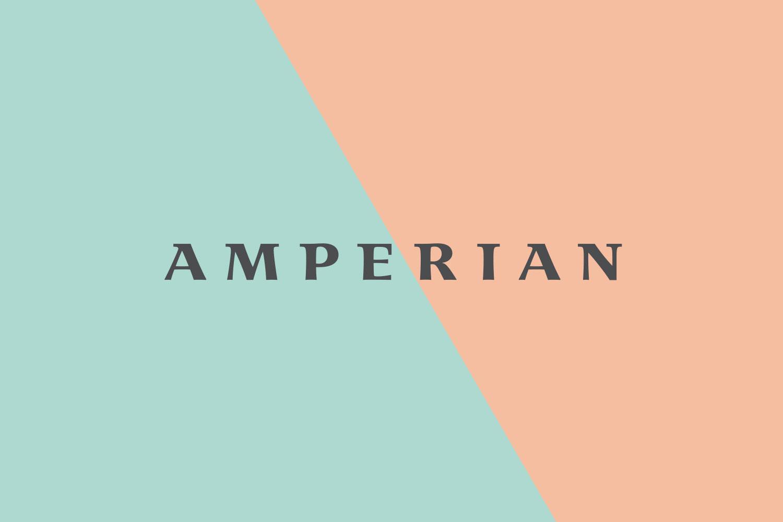 Amperian SG branding corporate identity design - Word mark logo lock-up.