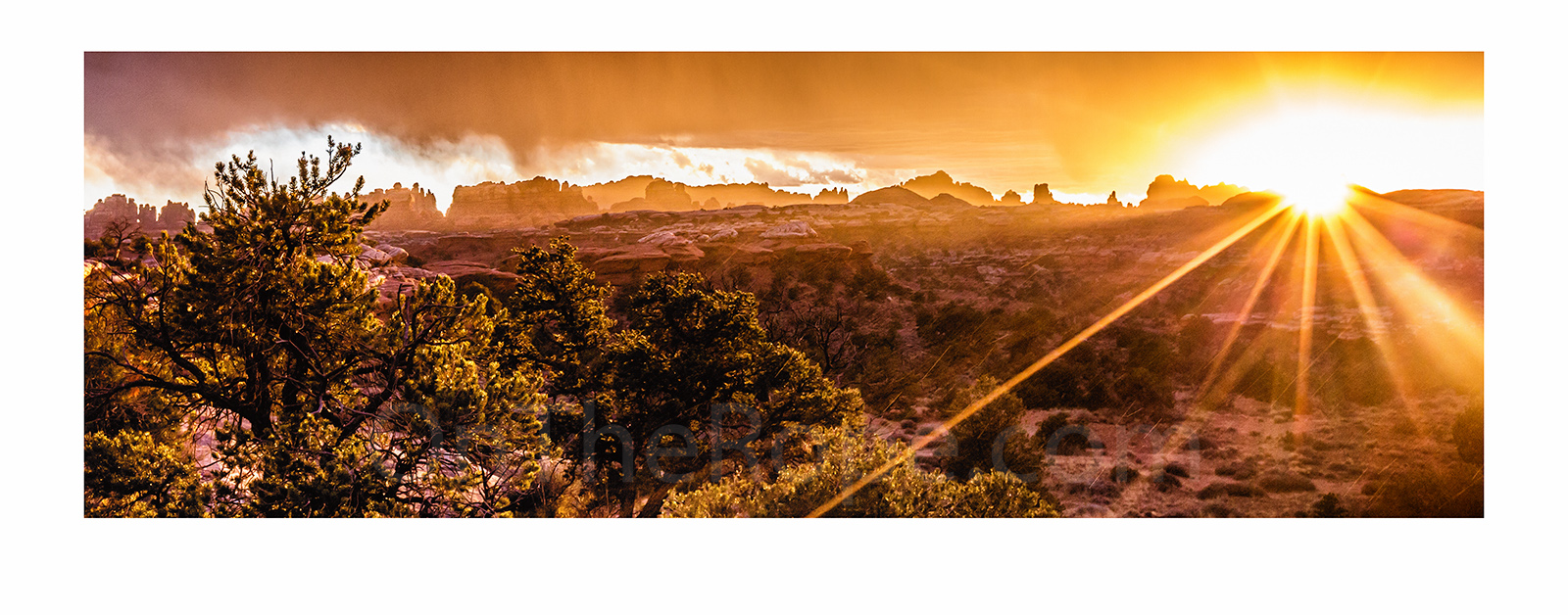 Winning photo: Canyonlands National Park, Utah, USA