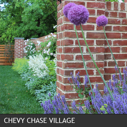 CHEVY CHASE VILLAGE