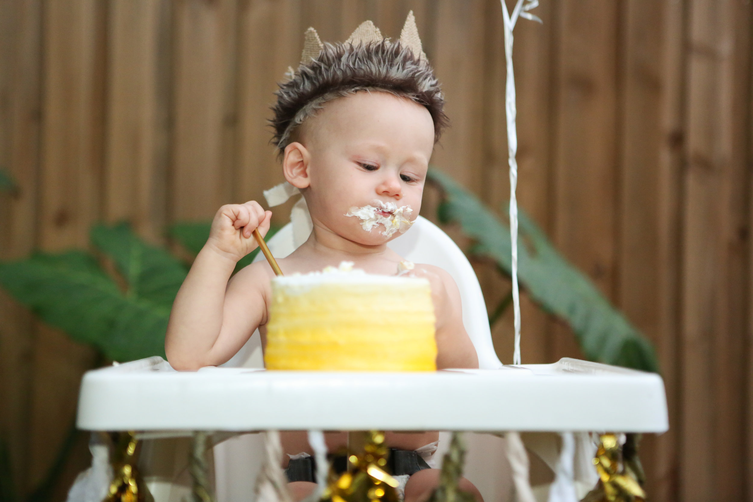 family-photography-orlando-kelly-ed-austin-birthday-party-cake.jpg
