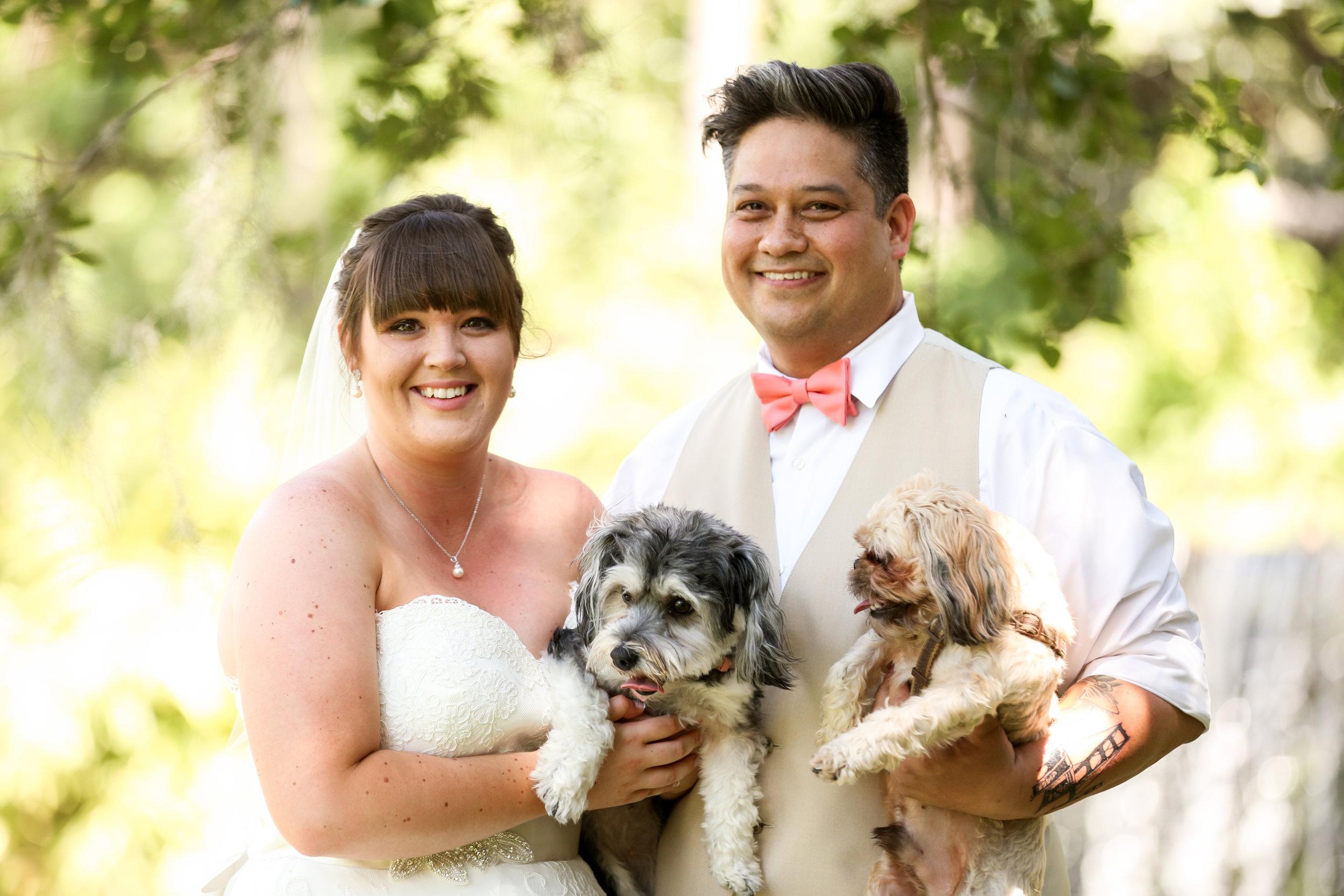 orlando-wedding-photographer-live-happy-studio-puppies-dogs-portrait-bride-groom-mission-inn-resort.jpg