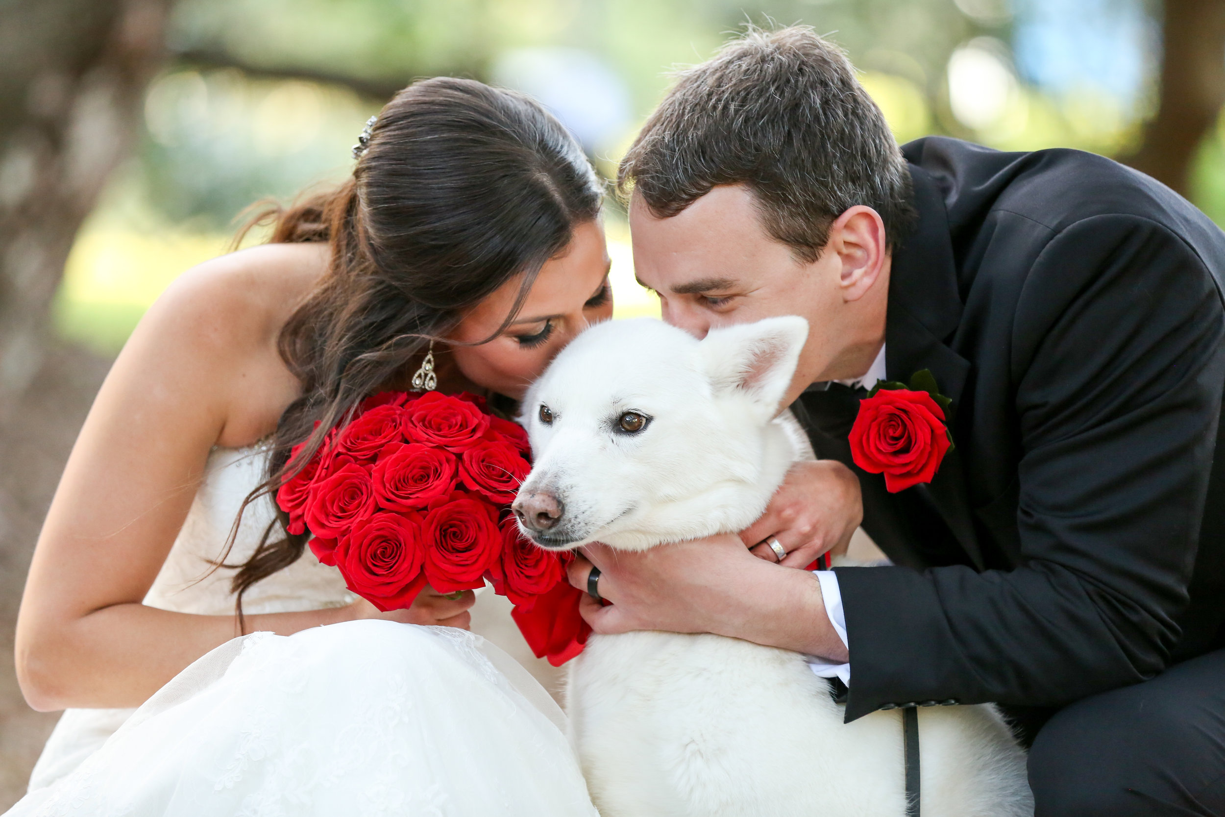orlando-wedding-photography-videography-LiveHappyStudio.Com-dogs-puppy-roses-12.jpg