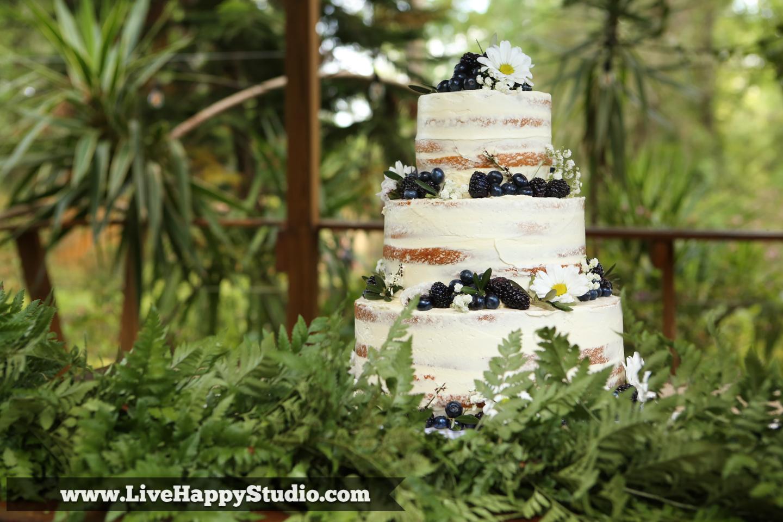 orlando wedding photography  orlando wedding photographer  harmony gardens wedding venue orlando  wedding cake