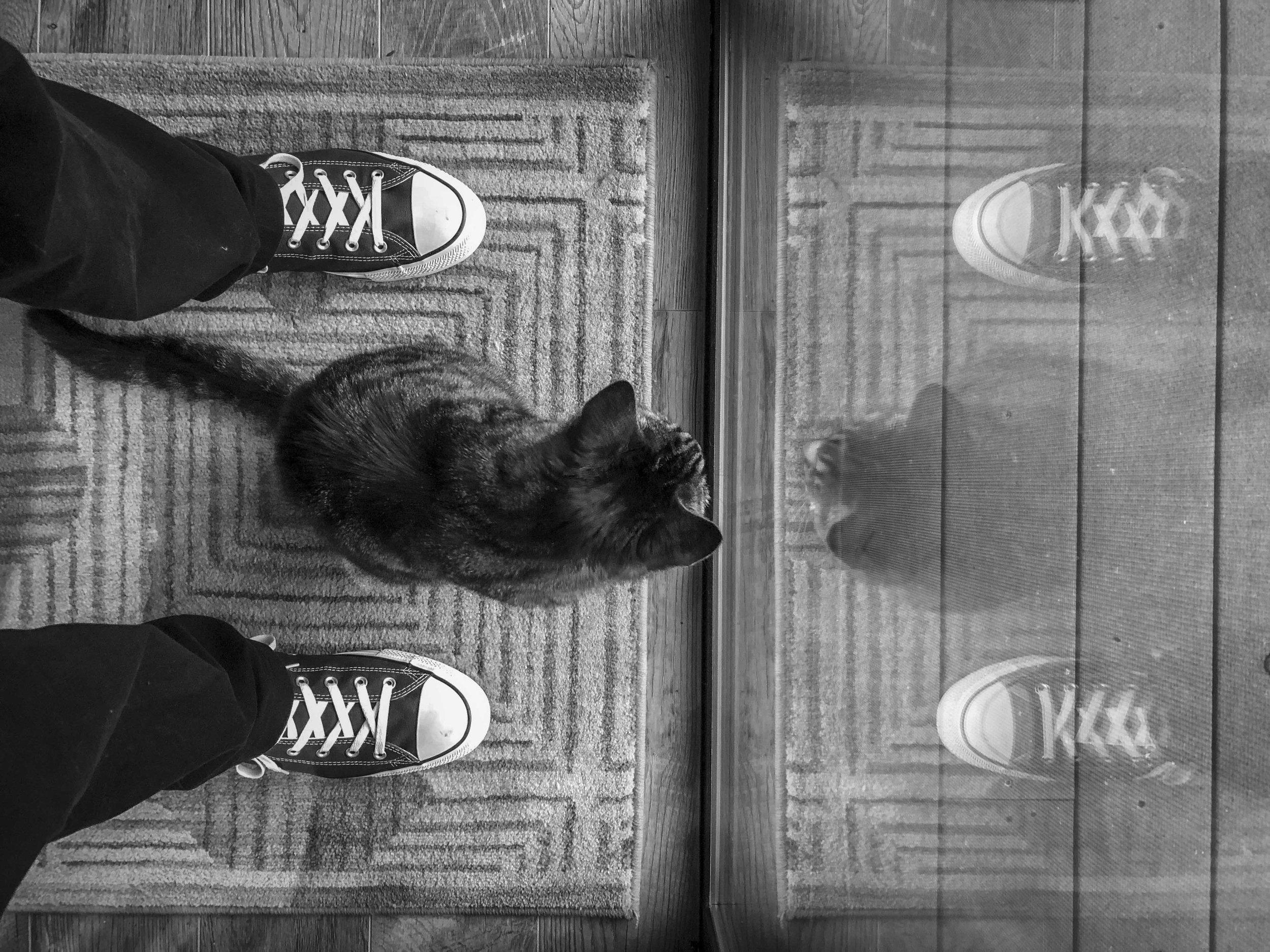 Simon feet.jpg