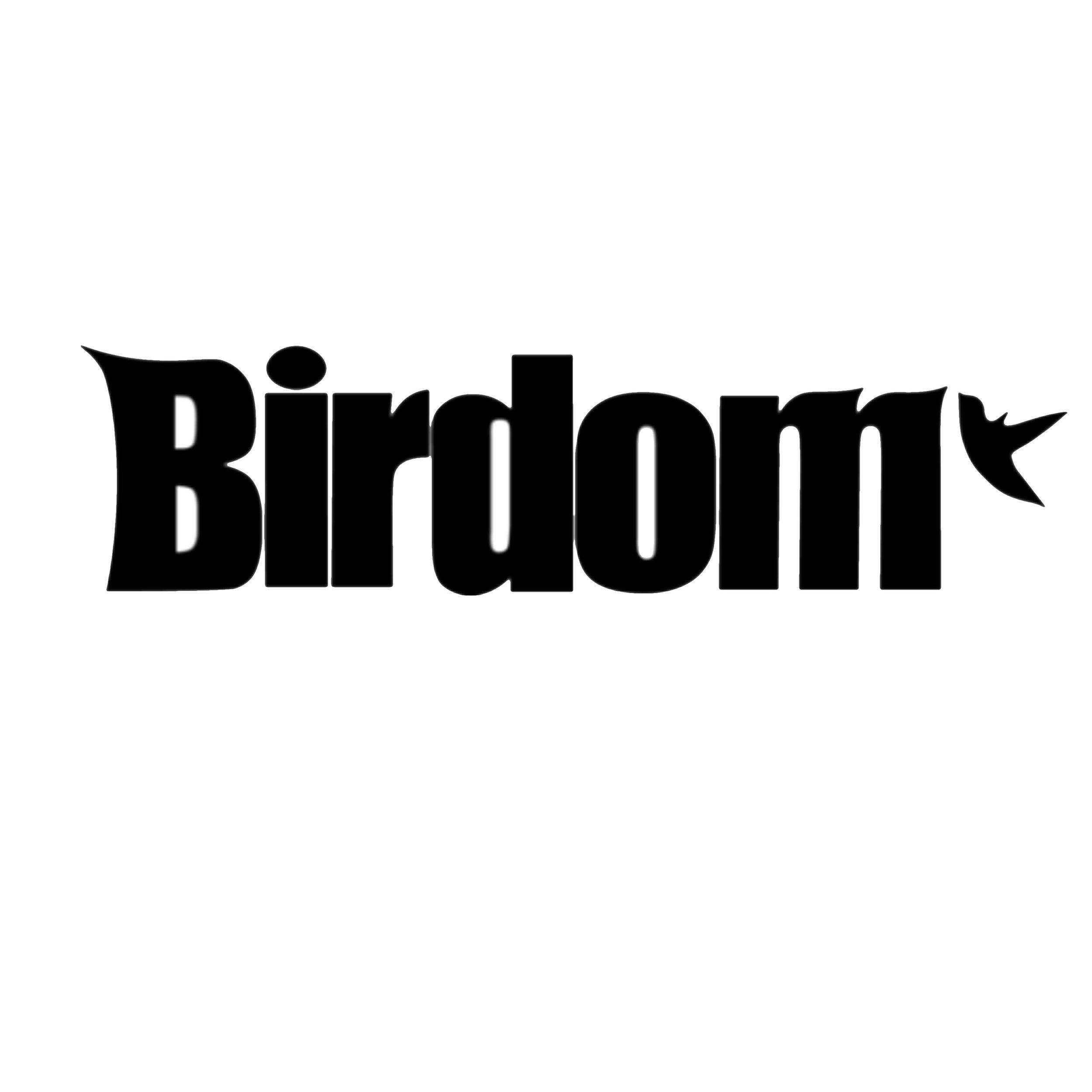 birddog-surfboards-logo