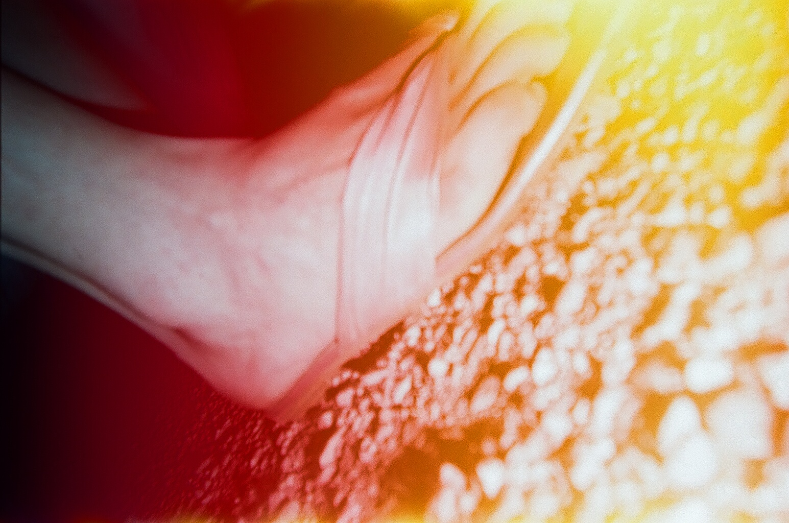 I dropped my camera on the cement, inadvertently taking a portrait of my lovely foot while also causing light leaks.