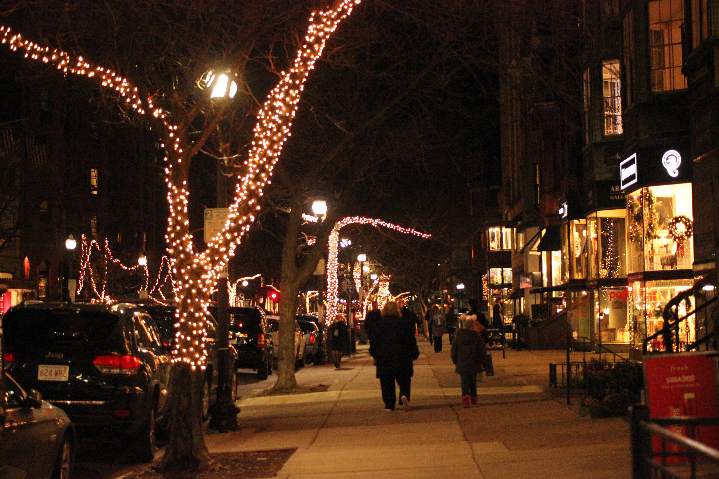 Newbury Street all lit up for the holidays.