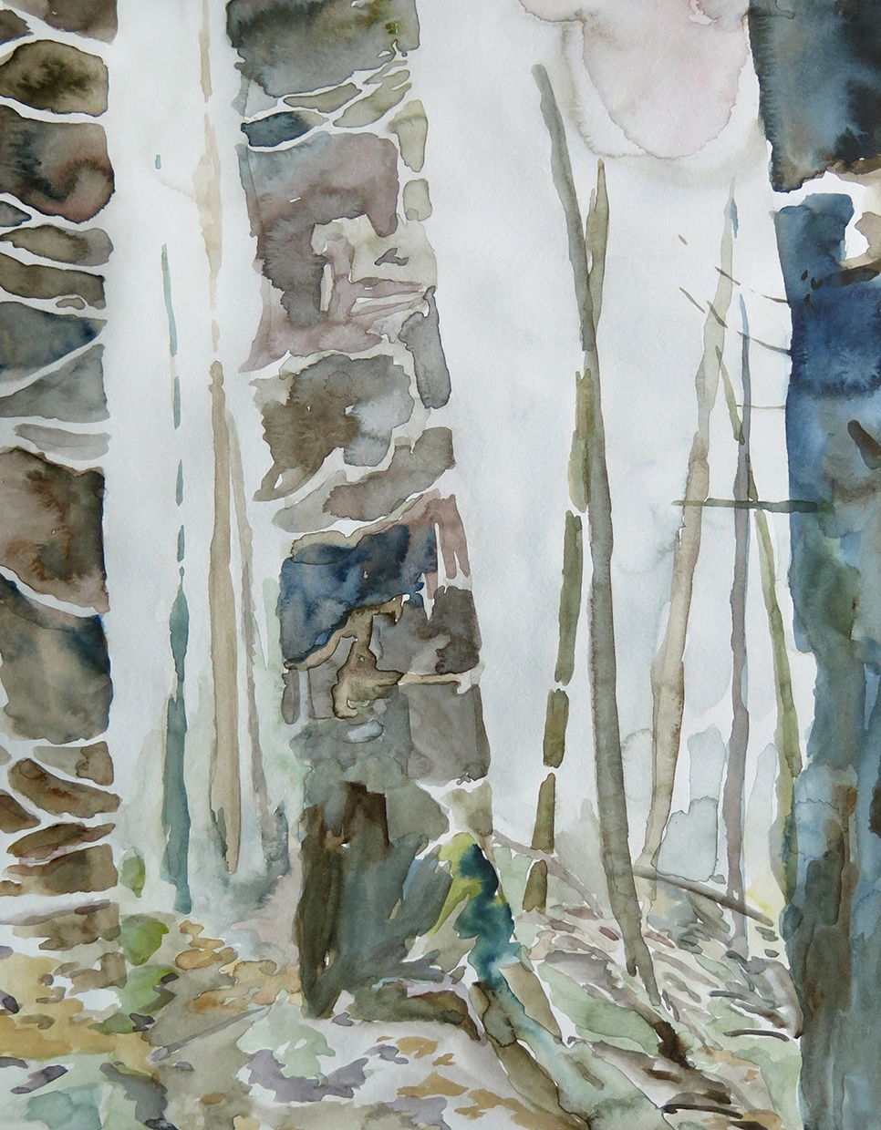 Forest, Dale   Watercolour on paper, 10.6 in. x 13.8 in. 2013