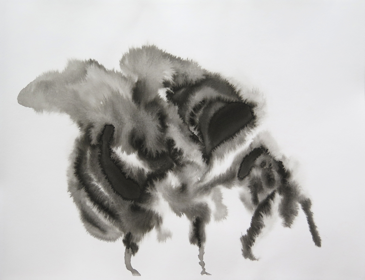 Bee 08   Ink on paper, 10.6 in. x 13.8 in. 2013