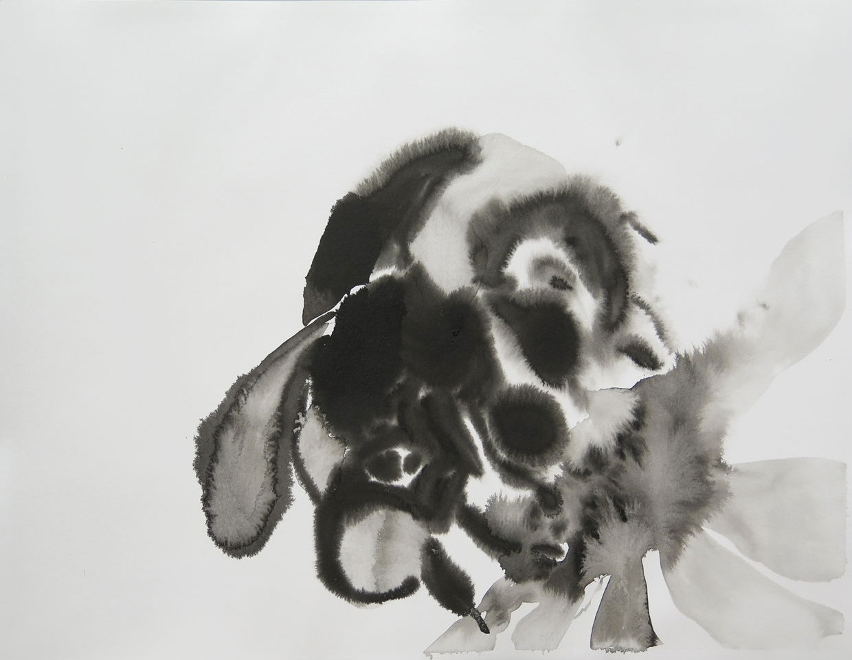 Bee 07   Ink on paper, 10.6 in. x 13.8 in. 2013