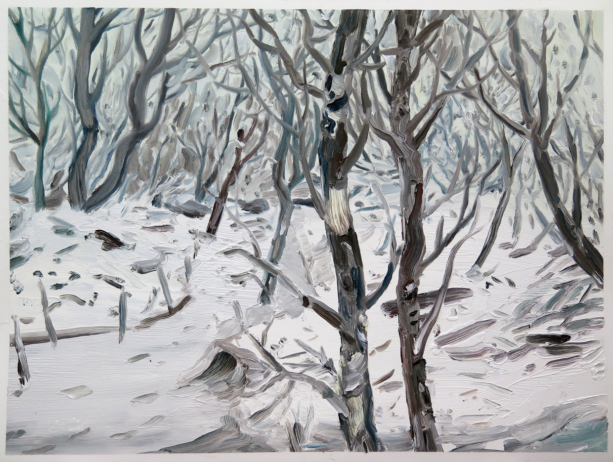 Loud forest, Dale   Oil on paper, 16.5 in. x 22 in. 2013