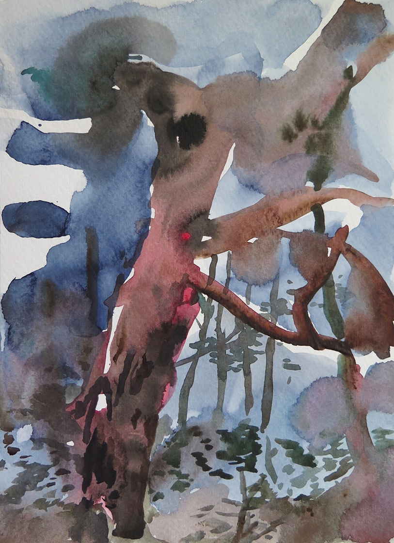 """""""Forest Outside Graz 05"""" Watercolour on paper, 6.75"""" x 9.25"""", 2014."""