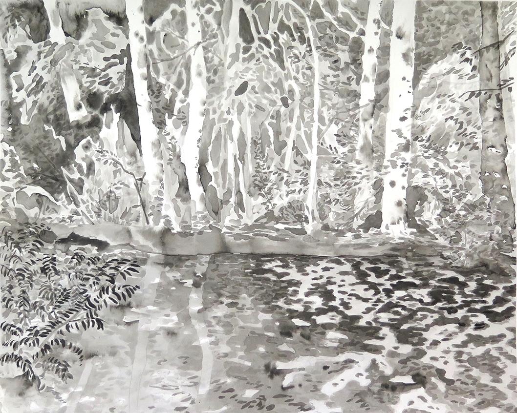 """Swamp Near Graz"" Ink on paper, 11"" x 14"", 2014"