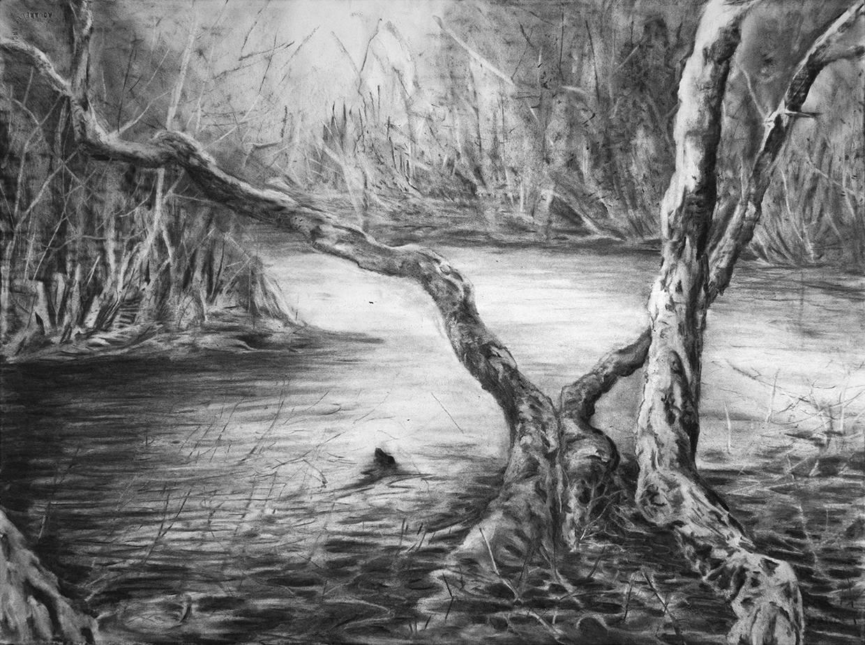 Swamp 04 small.jpg