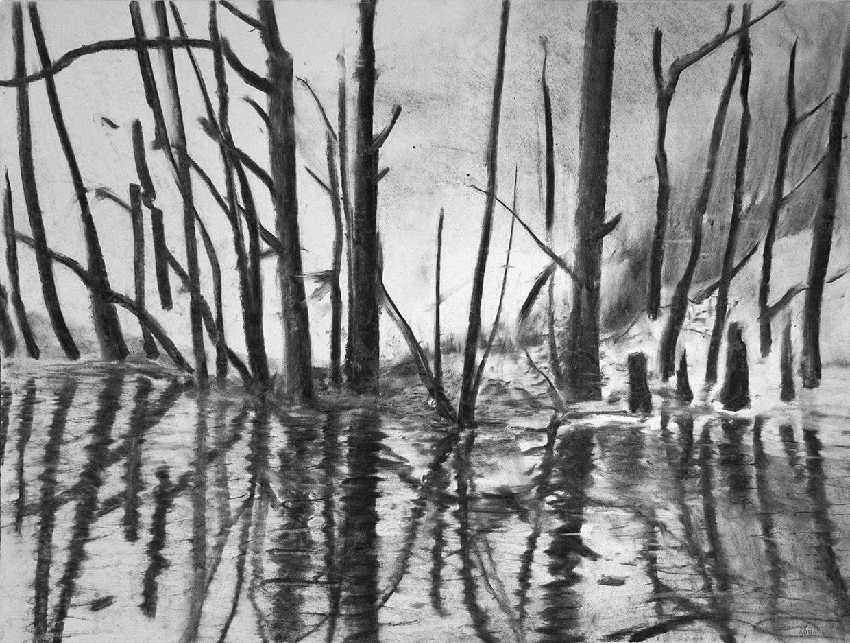 Swamp 07 small.jpg