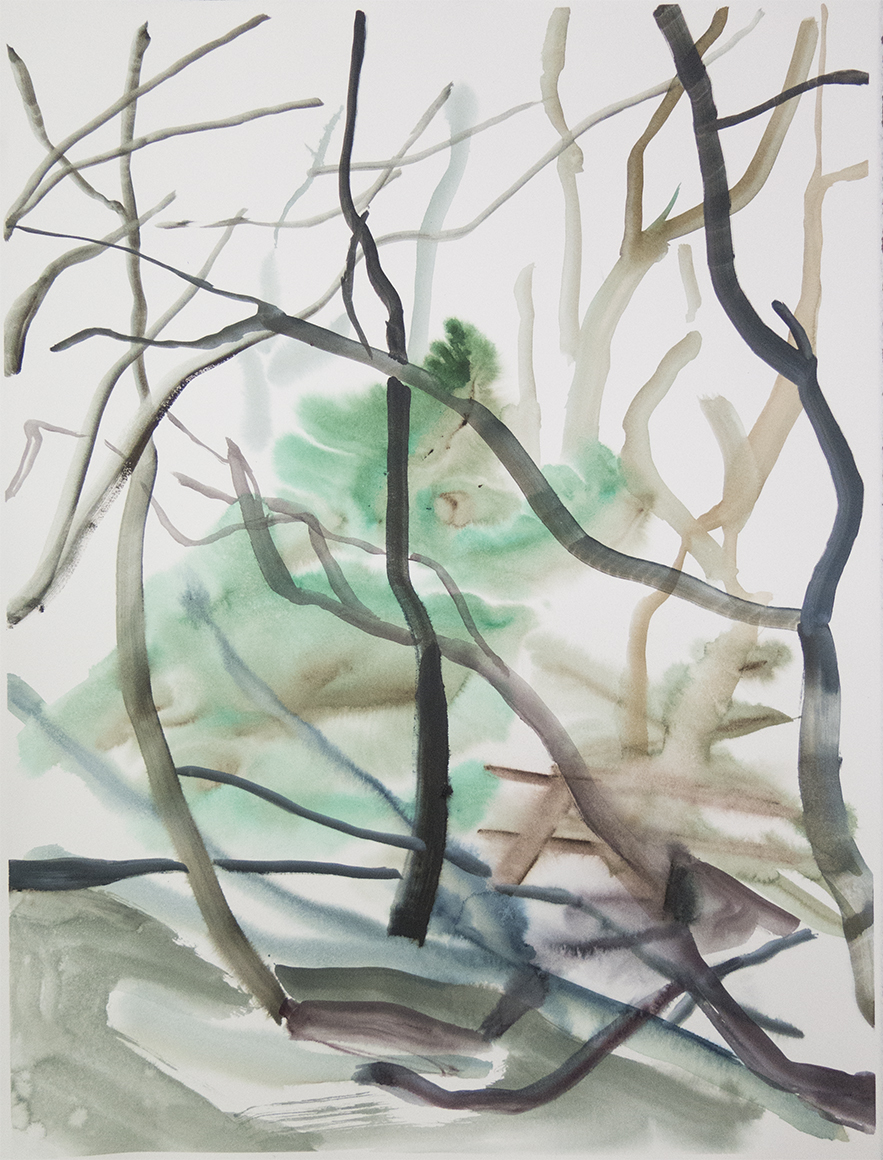 """""""Wienerwald 01""""Watercolour on Arches paper. 30"""" X 22.5"""", 2015"""