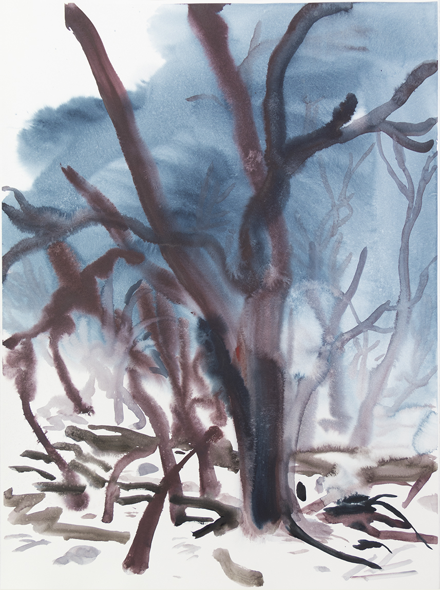 """""""Wienerwald 03""""Watercolour on Arches paper. 30"""" X 22.5"""", 2015"""