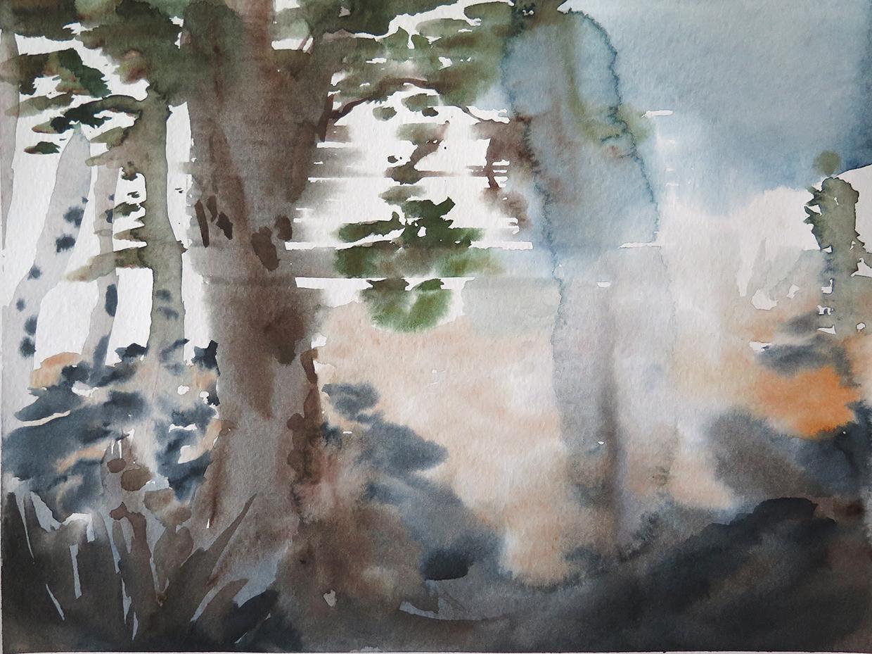 wien forest 03 small.jpg