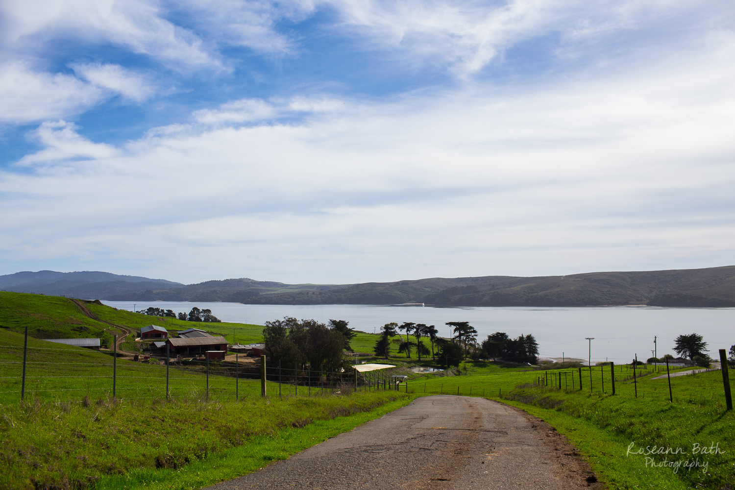 Tomales Bay from Clark Road, Marshall CA