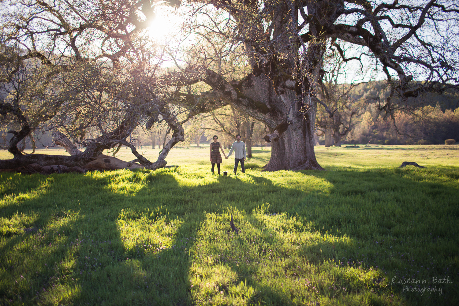 engagement session valley oak