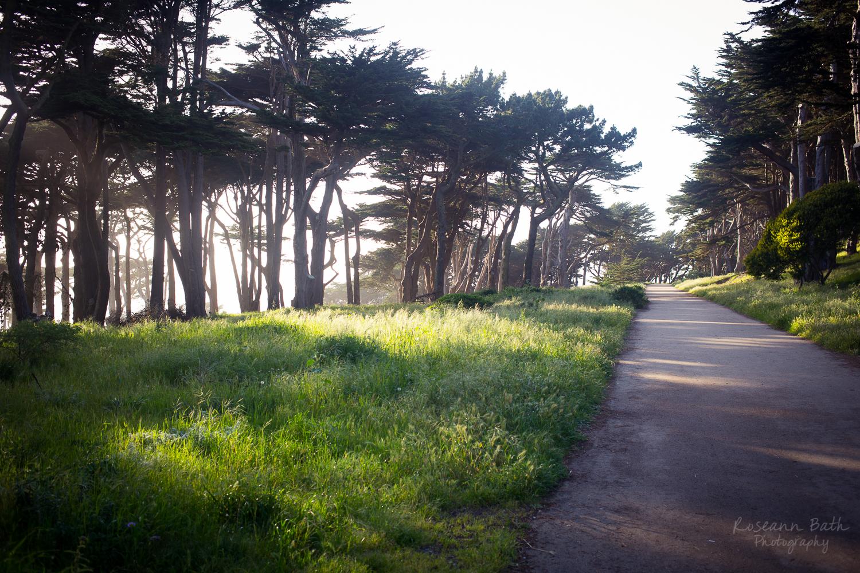 Lands End Lookout trail