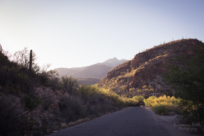 Sabino Canyon views