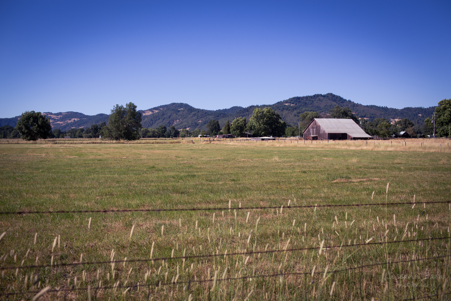 Willits Valley
