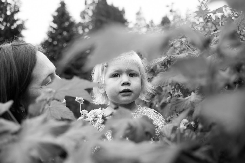 bay area family portrait photographer