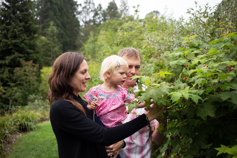 Tilden Park Family Session, East Bay Family Photographer
