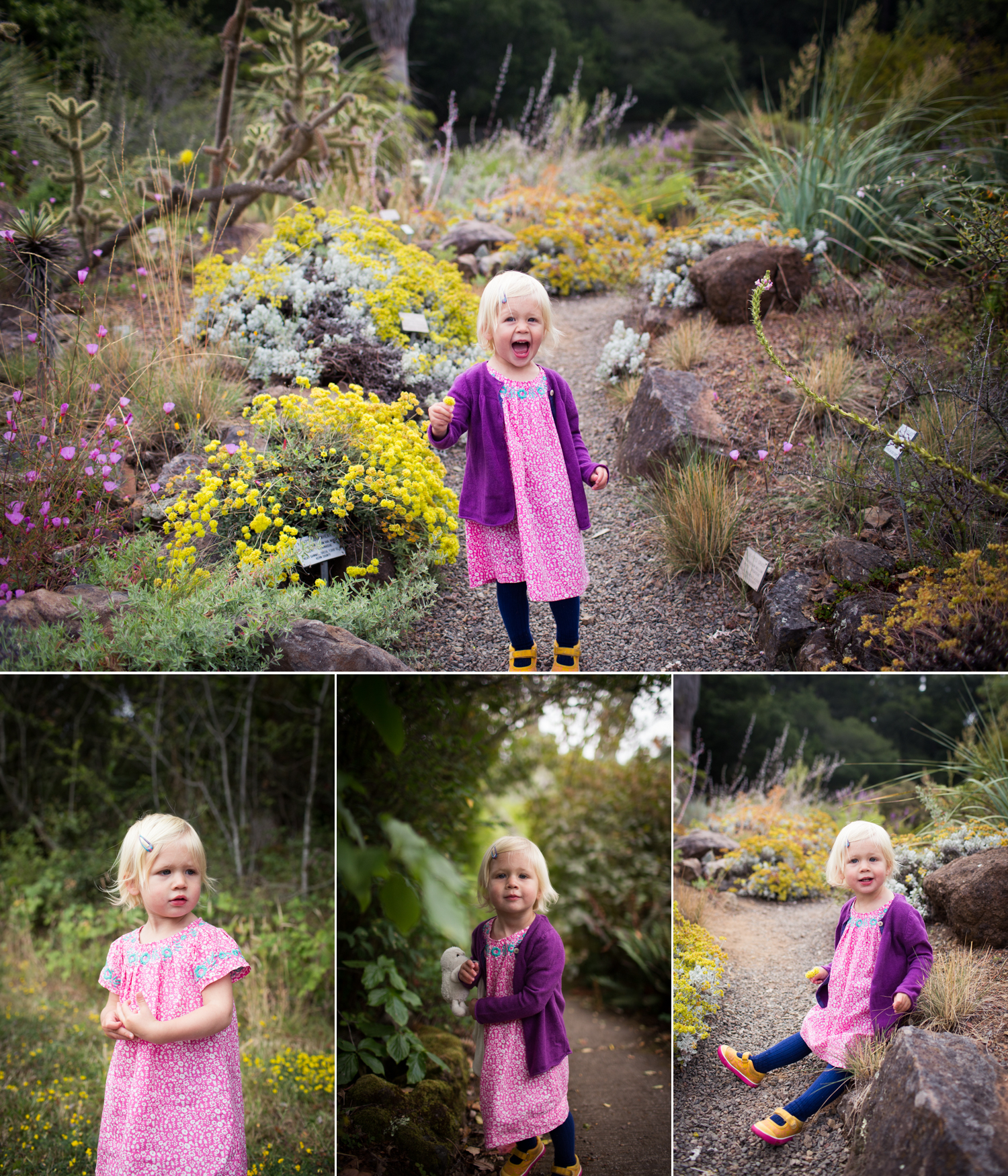 East Bay Family Photography