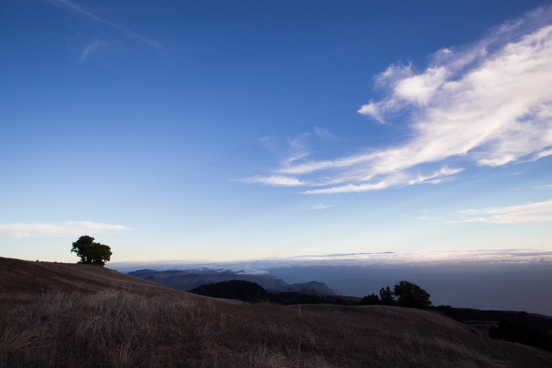 mount tam skies