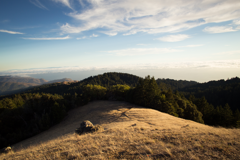 mount tamalpais hike view