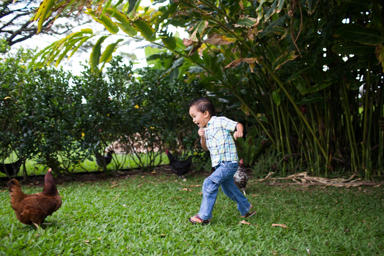 family session hilo big island photographer
