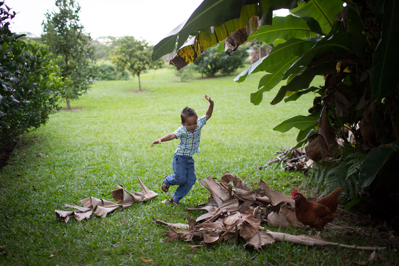 family portrait photographer hilo hawaii