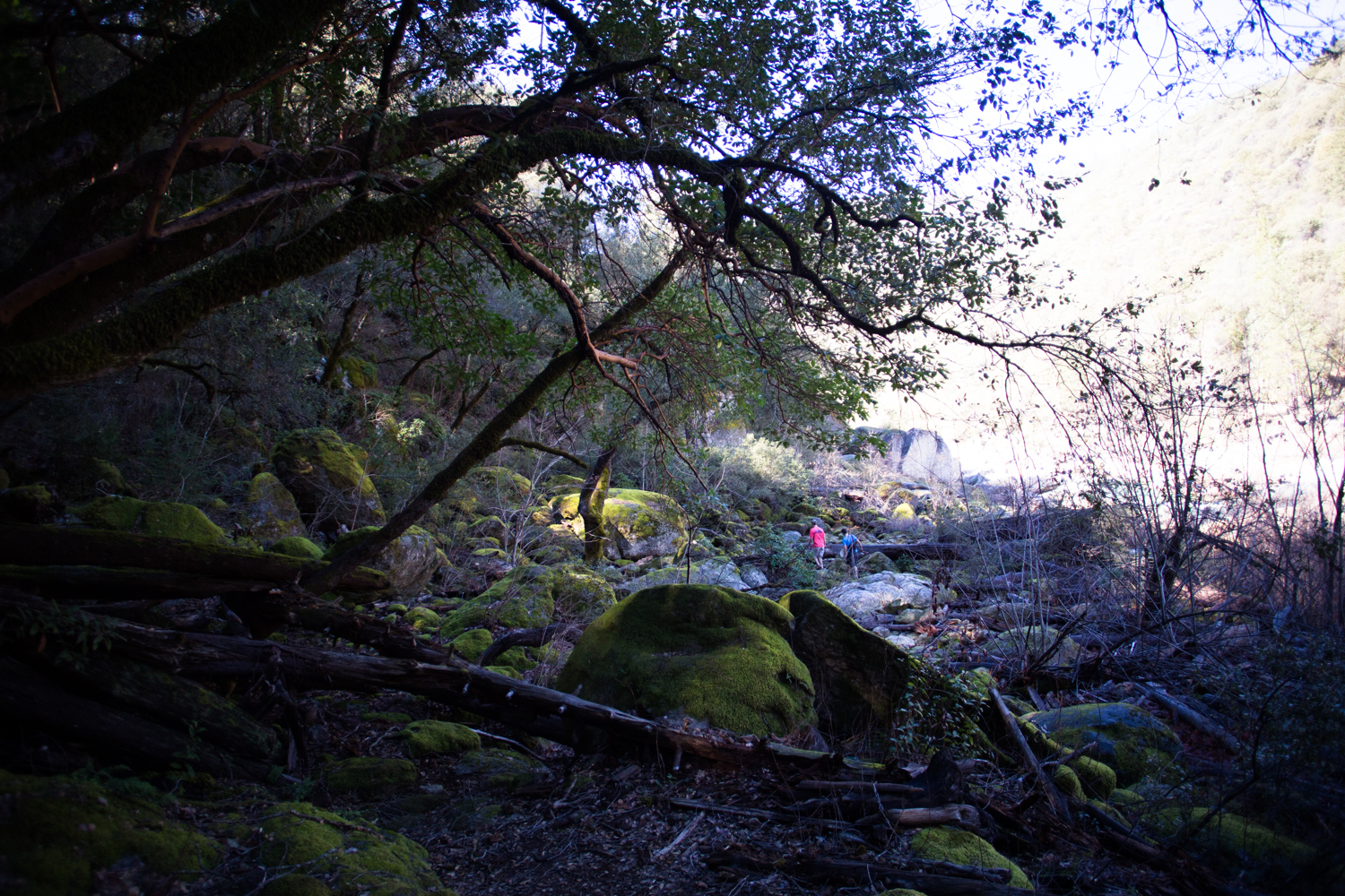 independence trail south fork of yuba