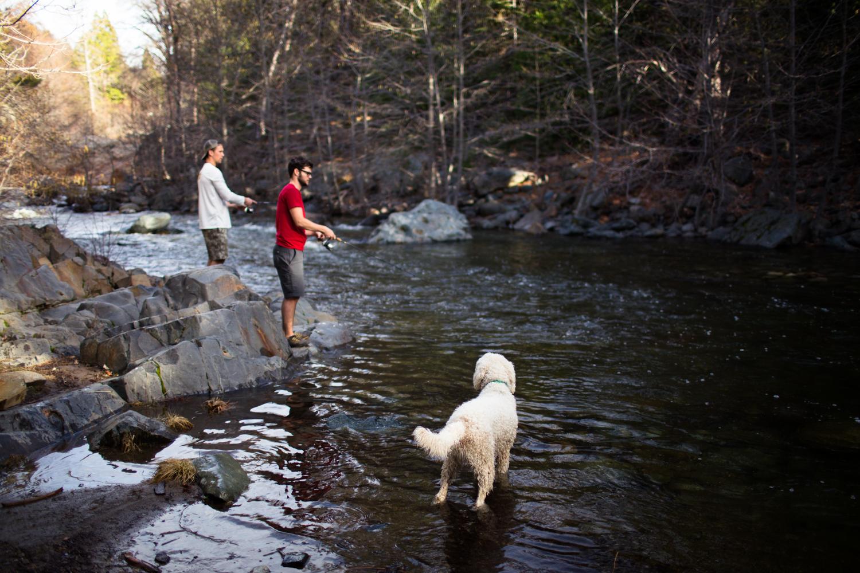 fishing salmon creek