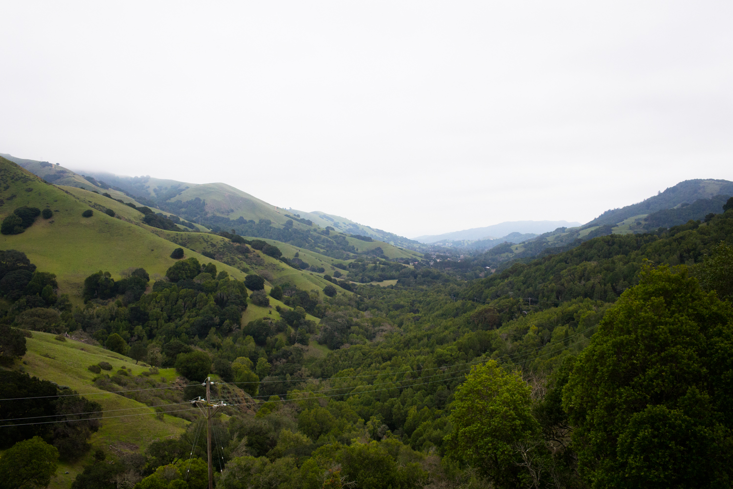 Marin County from Lucas Valley Road