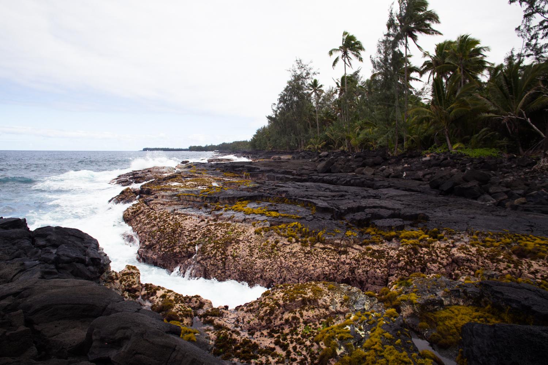 lava rock tidepools