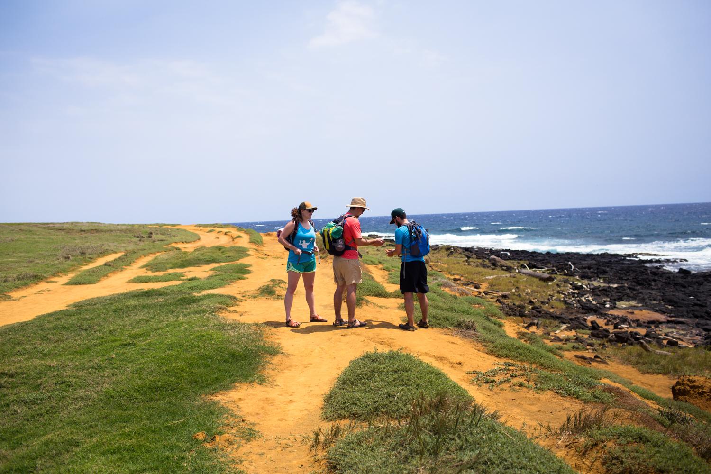 hike to green sand beach