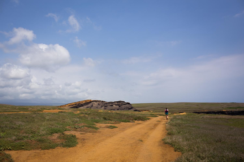 almost to papakolea beach