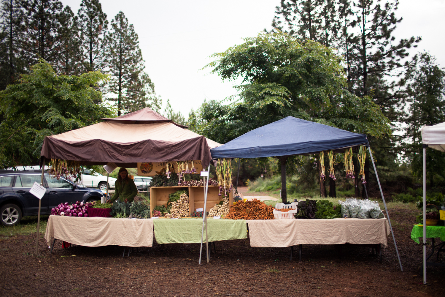 Nevada County Certified Grower's Market at the North Star House