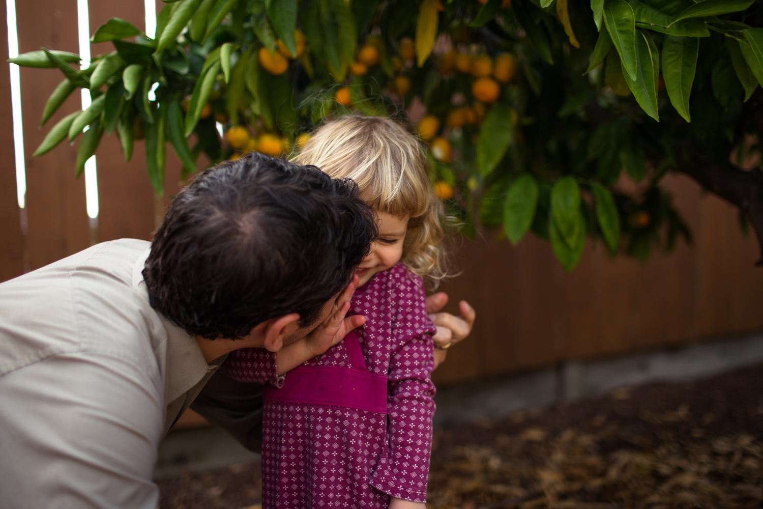 kisses under the mandarin tree