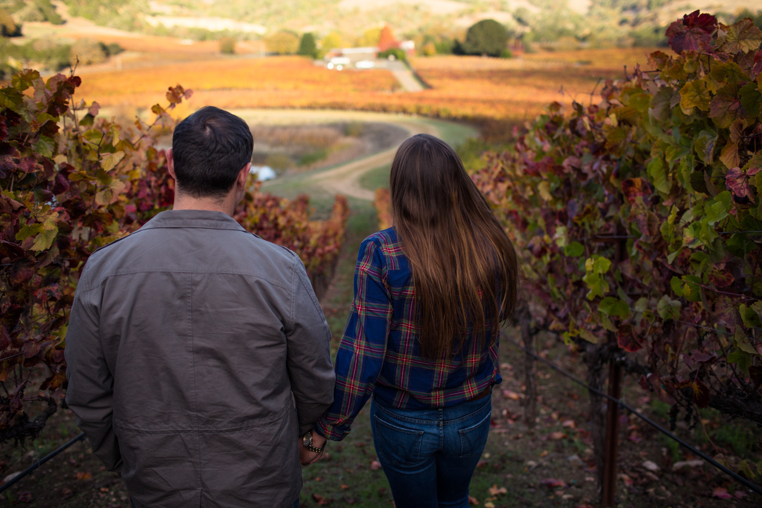 anderson valley mendocino county boonville philo wedding photographer engagement