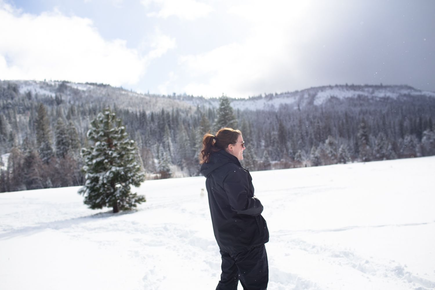 snowshoeing tahoe national forest