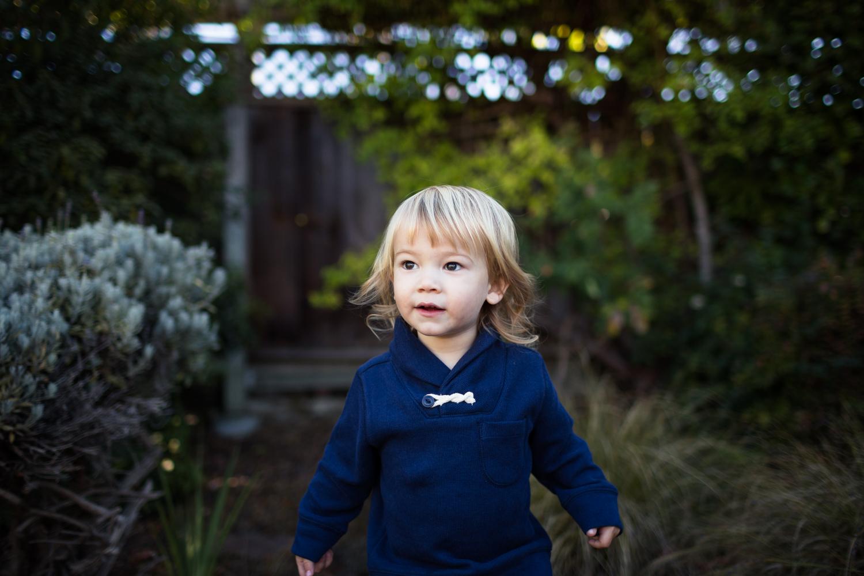 east bay child portrait photographer